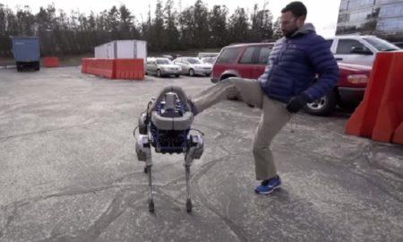 Robot Dog: Spot