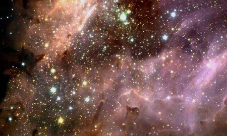 Organic Life In Space