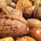 Nut Health Study