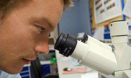 Scientist Microscope