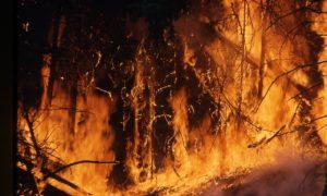 Canada-Wildfire-Oil